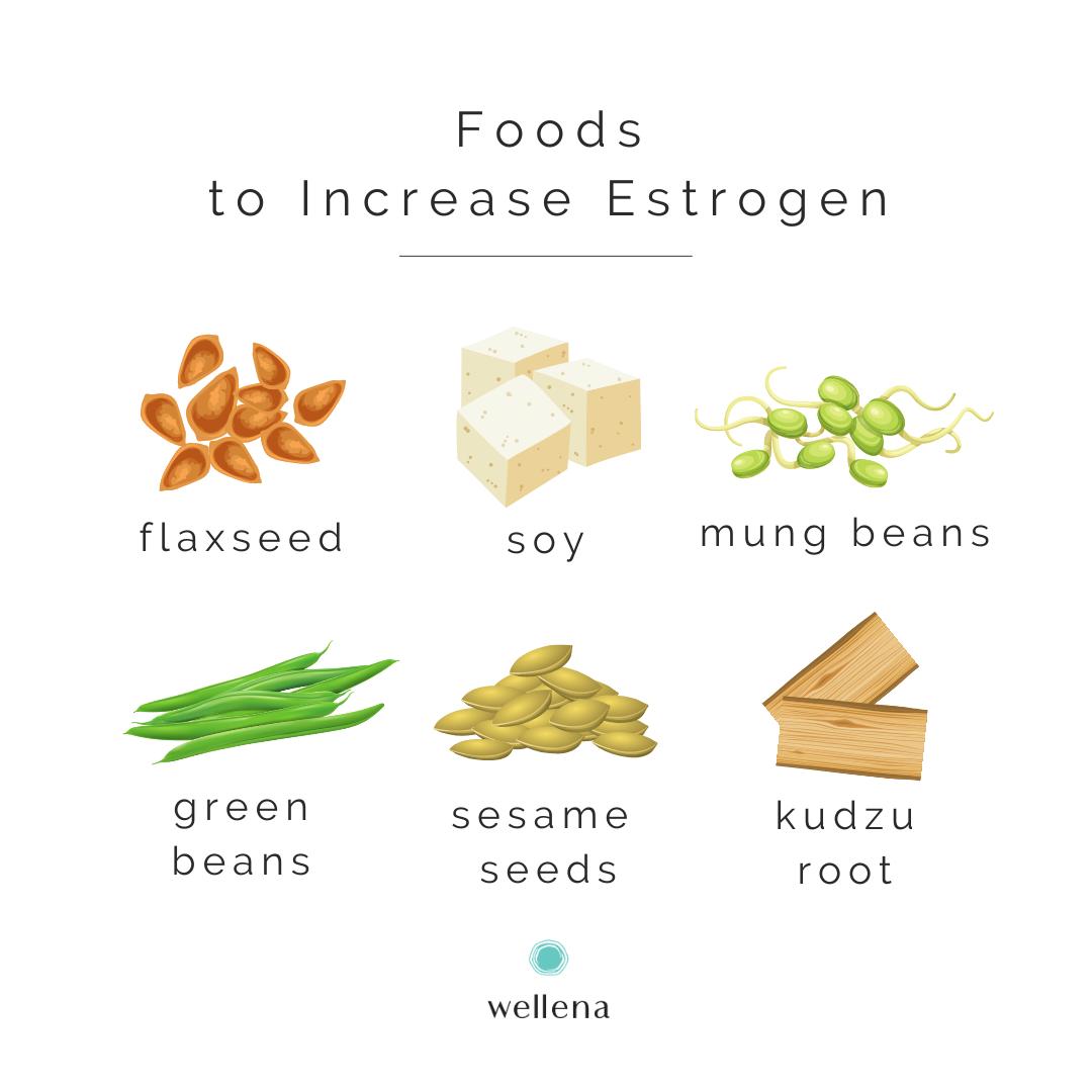 Foods To Increase Estrogen