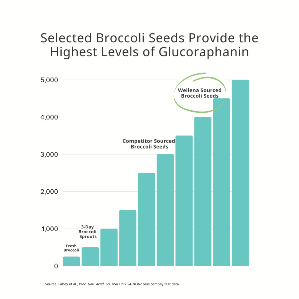 Broccoli Seed Graph
